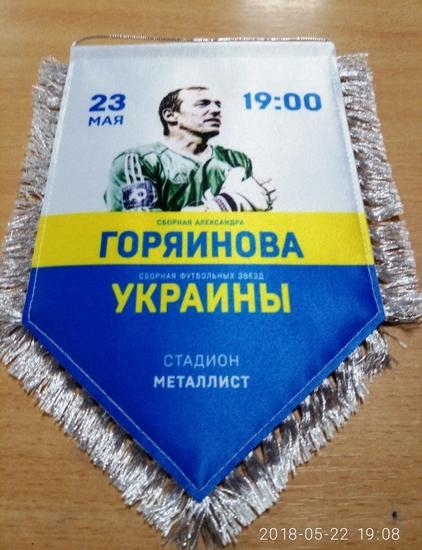 Вимпел до матчу Олександра Горяїнова